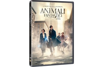 Warner Bros Animali fantastici e dove trovarli (Dvd)